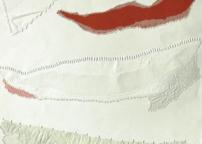 Rino Carrara (pittura)