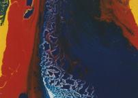Flussi, smalto su tela, cm 120x60